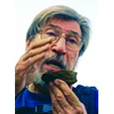 Fiorenzo Cesare Ugolini