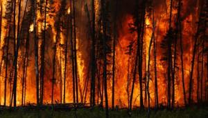 Fire-Fire-700x400.jpg