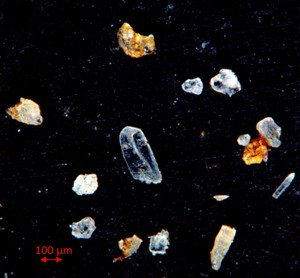 Cryogenic gypsum isolated from living Melosira arctica hanging from icefloes during the PS 106 expedition