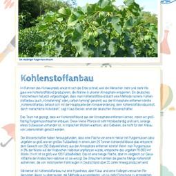 German translation