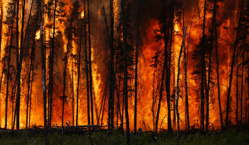 Boreal forest fire in Canada.jpg (Credit: Stefan Doerr, distributed via imaggeo.egu.eu)