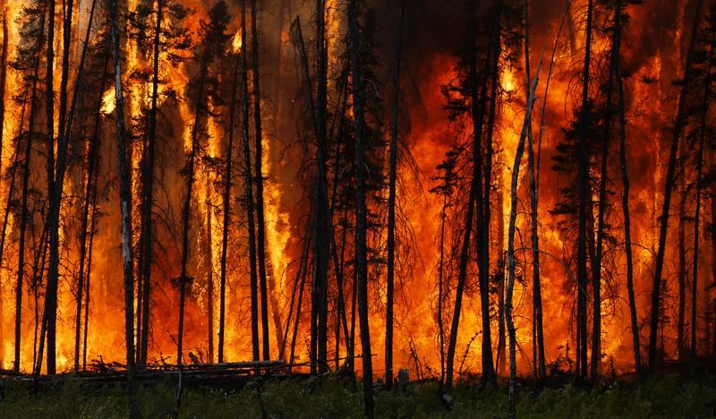 Boreal forest fire in Canada.jpg (Credit: Stefan Doerr, distributed via imaggeo.egu.eu)