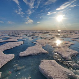 Ponds of melted freshwater (snow) on top of sea ice in the Arctic in summer.