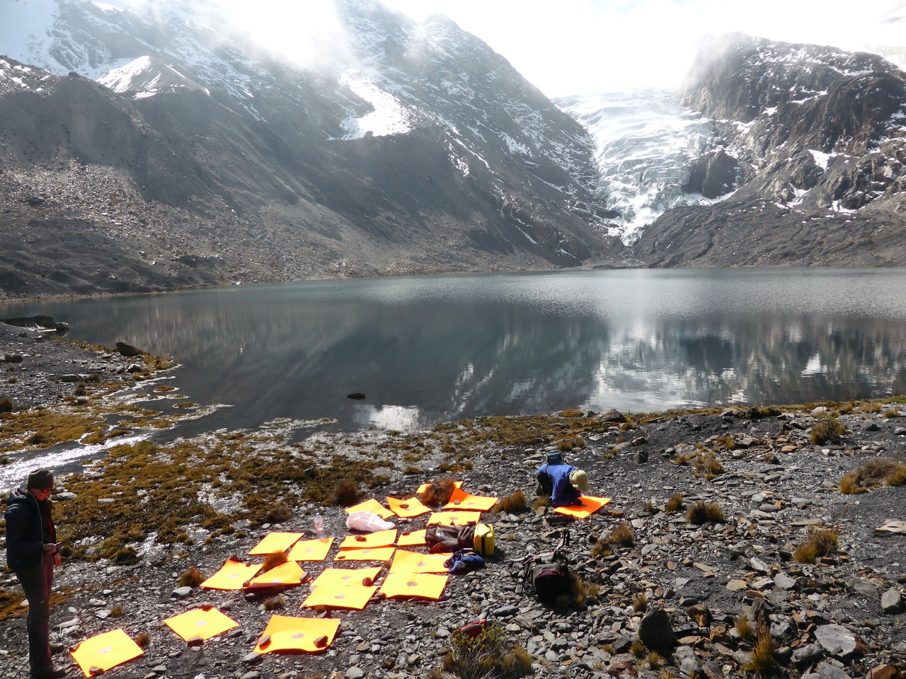 Field work in the Bolivian Andes (Credit: Simon Cook)