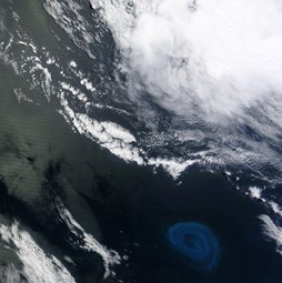 Example of an ocean eddy (not from the study) as seen from space