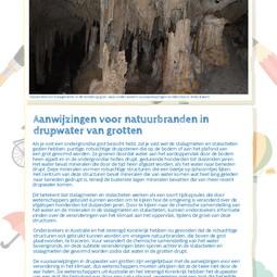 Dutch translation