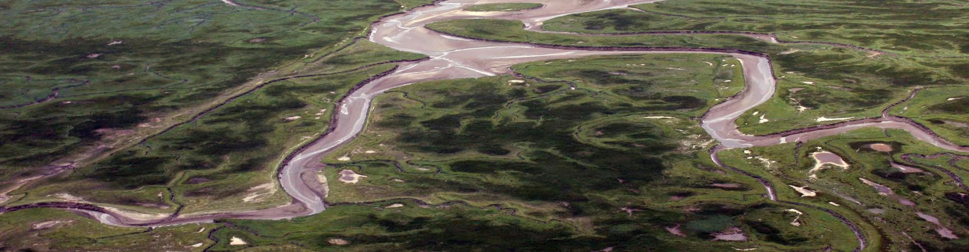 Aerial photograph of flooded land in the Saeftinghe region, southwestern Netherlands (Credit: A. de Kraker)