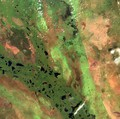 Aerial image of the Sudd wetlands in South Sudan