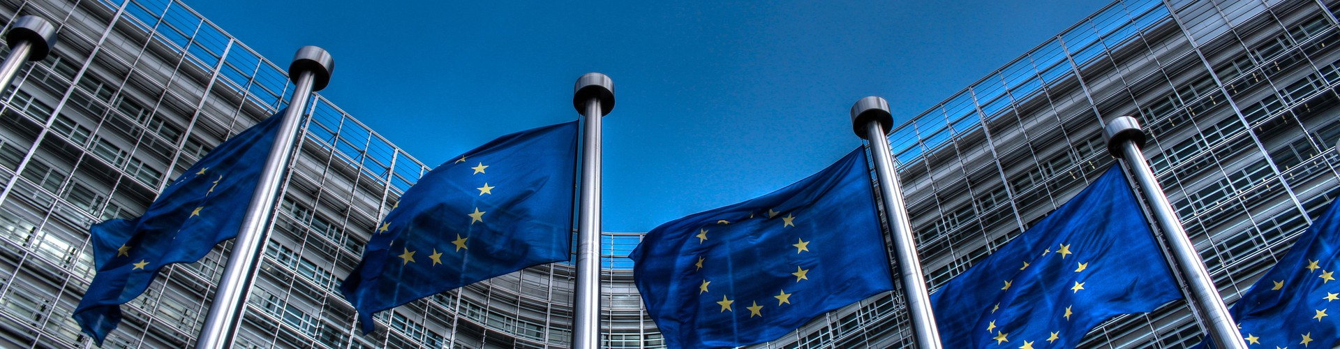 European Union flags in front of the Berlaymont Building, Brussels