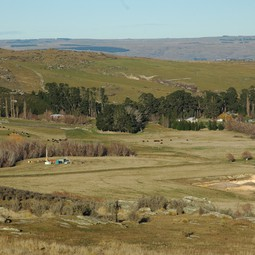 Foulden Maar, an extinct volcanic crater near Dunedin, New Zealand.