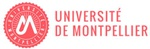 University of Montpellier  & BRGM logo