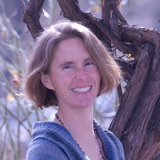 Terri Cook